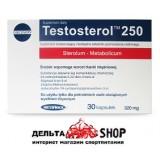 Megabol Testosterol tm250 30kap 320mg