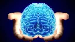 Натуральные вещества для здоровья мозга