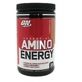Optimum Nutrition Essential Amino Energy 585gr. USA