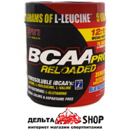 SAN BCAA-Pro Reloaded Powder USA 456gr