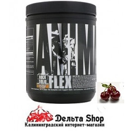 UNIVERSAL NUTRITION USA FLEX POWDER 381GR